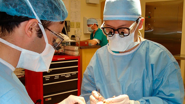 dr-parpados-Sitio-Banner-Mett-Dr-7-592x333